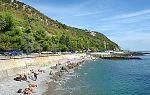 Пляж дельфин в ялте (ливадия, крым): фото, на карте, как доехать