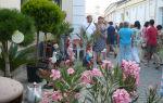 День курортника 2017 в евпатории: дата, программа мероприятий