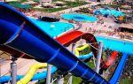 Веревочный парк в евпатории: цены, режим работы, отзывы