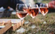 Винный фестиваль in vino veritas 2020 в коктебеле, крым: даты проведения, программа