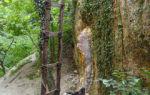 Скалы еды-аскер у горы крокодил, крым: на карте, фото, как доехать