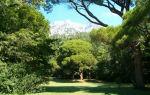 Все о мисхорском парке в крыму: фото, как добраться, описание
