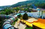 Аквариум в евпатории: официальный сайт, фото, как добраться, описание