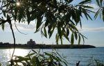 Карантинная бухта (севастополь): пляж, фото, отзывы, описание