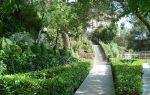 Парк чаир в ялте (крым): где находится, как добраться, фото, описание