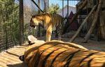 Зоопарк «сказка» в ялте: отзывы, сайт, цены, фото, как добраться, описание