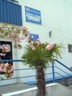 Пансионат «Горизонт» в Алуште: официальный сайт, отзывы, описание