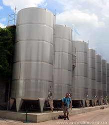 Инкерманский завод марочных вин в Севастополе: сайт, цены, отзывы, адрес, описание