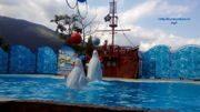 Развлечения для детей в Ялте: куда сходить и что посмотреть