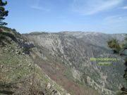 Ялтинский горно-лесной природный заповедник в Крыму