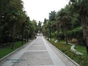 Приморский парк им Ю.А. Гагарина в Ялте (Крым): фото, отзывы, описание