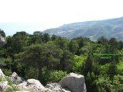 Гора Кошка в Симеизе (Крым): фото, где находится, легенда, описание